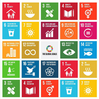 Happy Dog Takes on The World: UN Sustainability Goals - Can 17 Initiatives Transform the World?